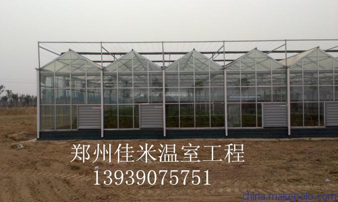 钢管拱棚,食用菌大棚,蘑菇大棚,草莓拱棚等各类钢结构温室大棚.